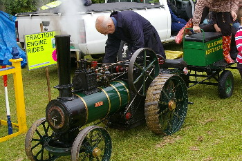 scale model steam traction engine rides